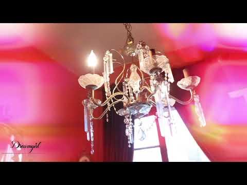 Dreamgirl Wigs - Pink Bob Wig
