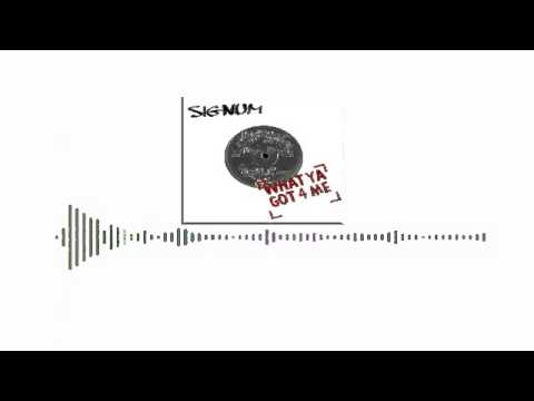 Signum - What ya got 4 me (Tony Maber & Luigi Gucia 2k14 Remix)
