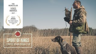 Sport of Kings - An Award Winning Falconry Video by Project Upland