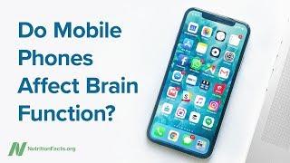 Ovlivňují mobilní telefony funkci mozku?