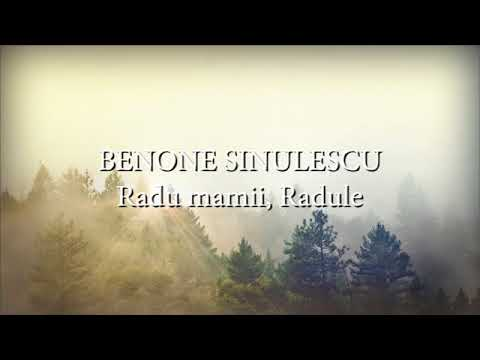 IULIANO - GANDURI (Lyrics VIDEO)