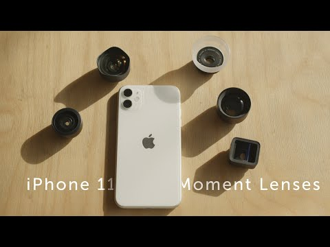 iPhone 11 with Moment Lenses - Why you still need them.