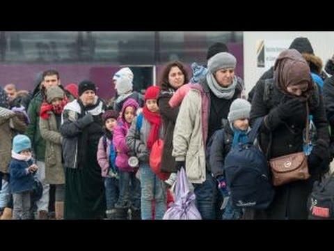 Calls grow to halt refugee program