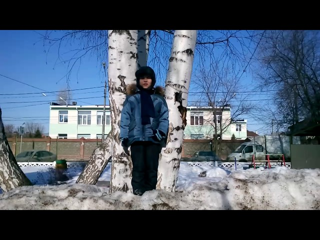 Изображение предпросмотра прочтения – МаркХабин читает произведение «Весенние воды (Еще вполях белеет снег…)» Ф.И.Тютчева