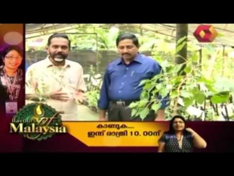 Bhoomigeetham | Ayurvedic Medicinal Farm in Allapuzha | Full Episode