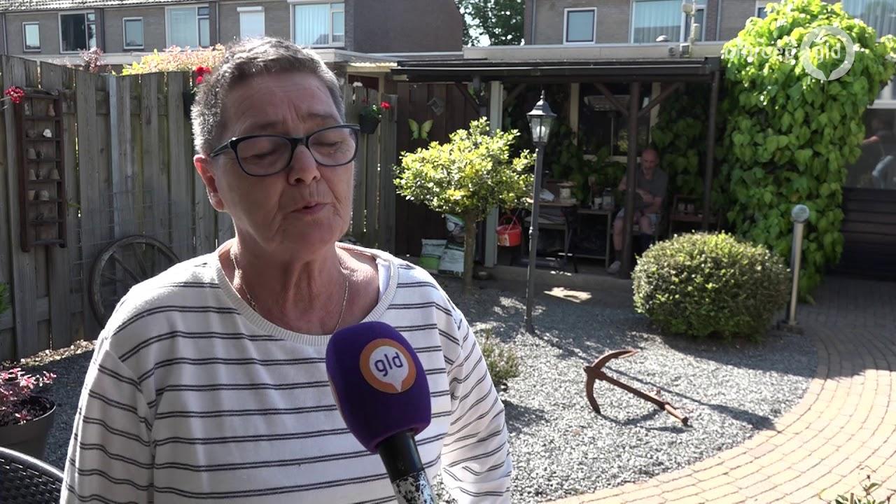Rattenplaag In Tuin : Dorp geteisterd door ratten mijn hele tuin ligt overhoop youtube