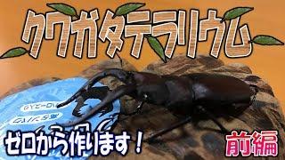 クワガタ&カブトムシ☆昆虫採集2017 クワガタテラリウムを本気で作るぞ...