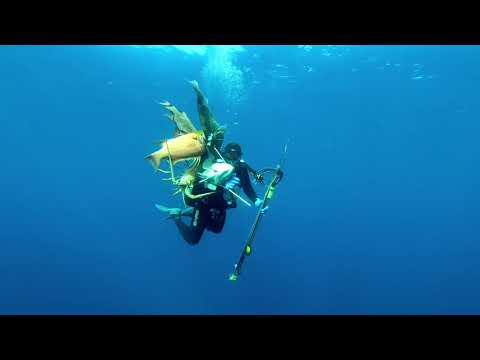 Spearfishing 1000s+ lbs Fish in the Gulf of Mexico