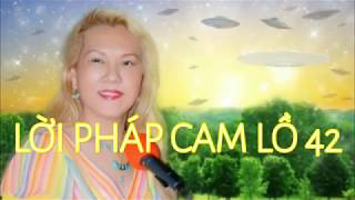 LỜi PhÁp Cam LỒ  42  - Chinghai
