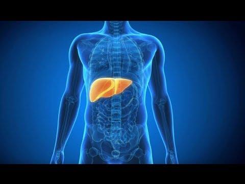 la-salute-del-fegato-inizia-a-tavola:-questi-8-comuni-alimenti-non-devono-mancare-nella-vostra-dieta