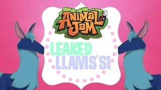 Animal Jam: Leaked Llamas?!