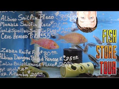 Full Fish Store Tour - Texas Aquatics Tropical Fish 1000s Of Gallons!