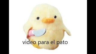video para @el pato