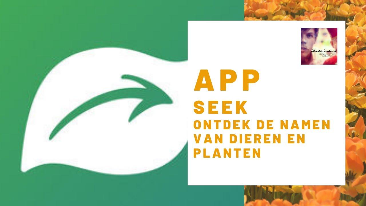 Seek by iNaturalist - Ontdek de namen van dieren en planten met deze  handige app