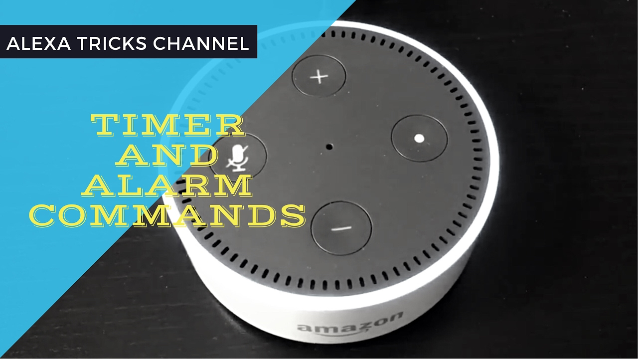 top 10 timer and alarm commands of amazon alexa youtube