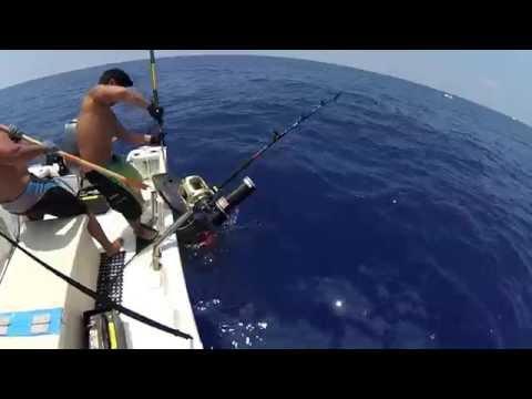 2014 Ep # 26- Palu Ahi 3/3 Yellowfin Tuna Fishing Kona, Hawaii