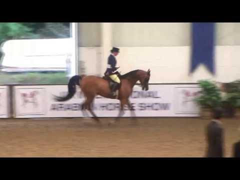 UK International Arabian Horse Show 2013 - Ridden Awards & Championship