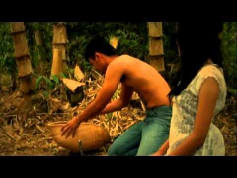tekinfordia short film - Virgin Forest