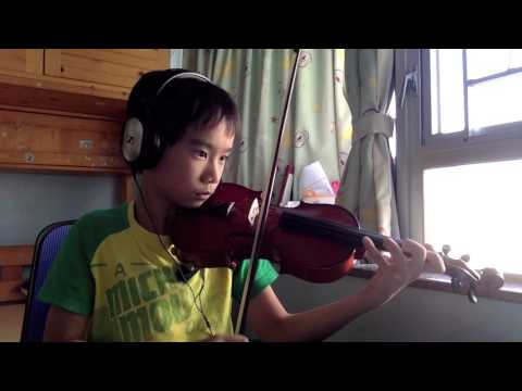 Blank Space Violin Cover
