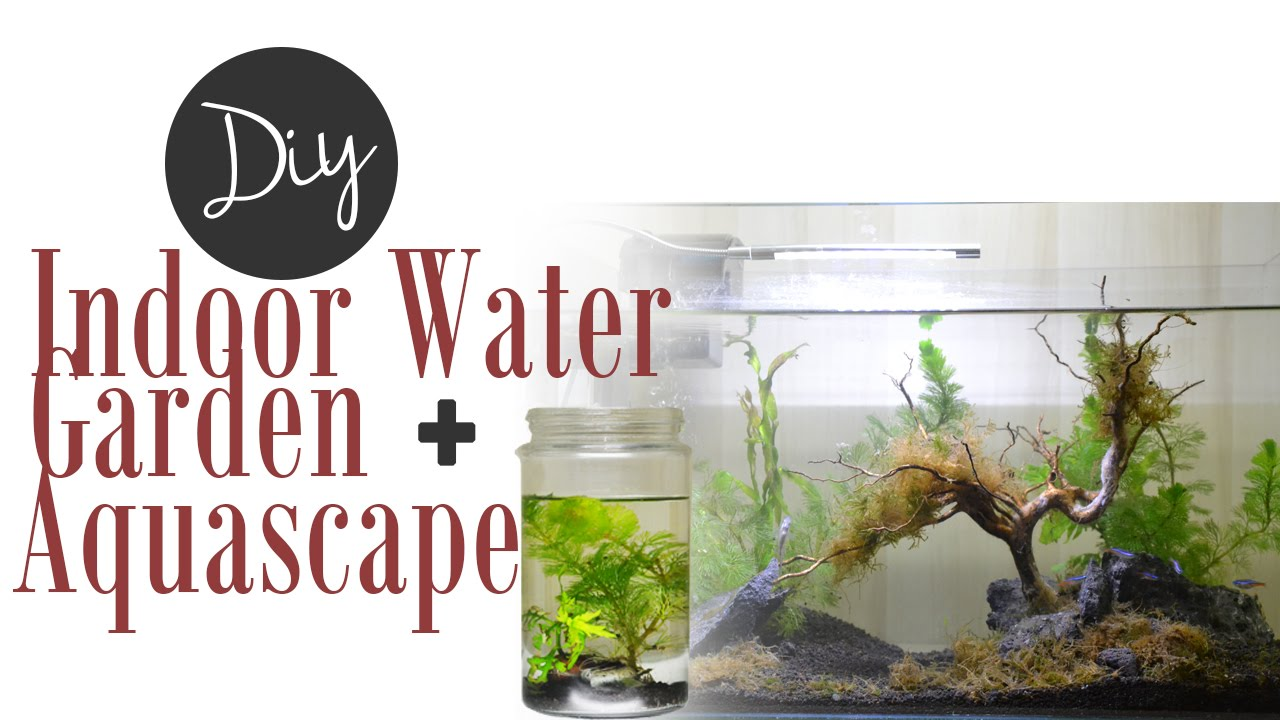 how to make a fish tank garden
