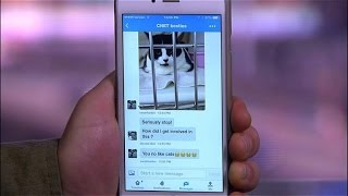 CNET How To - How to send Group Messages in Twitter