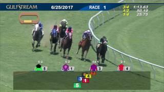Gulfstream Park Race 1 | June 25, 2017