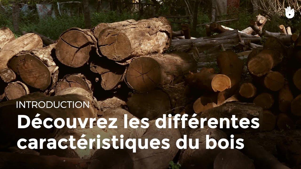 Quelles Sont Les Différents Types De Bois les différentes caractéristiques du bois | menuiserie