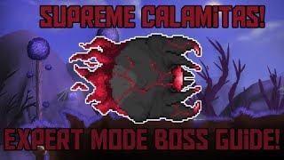 How to Beat Supreme Calamitas in Terraria! -Expert Mode Boss Guide!