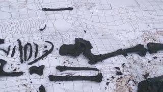 🔴 Раскопки по войне Поиск без вести пропавших солдат