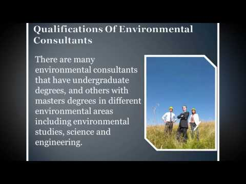 How Environmental Consulting Firms Work