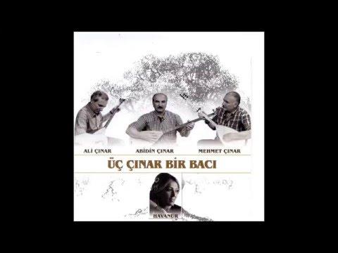 Üç Çınar Bir Bacı - İki Elim Yakanda ( HAVANUR )  [© ARDA Müzik]