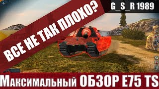 WoT Blitz - Честный обзор E 75 TS.ИМБА или ПРОВАЛ ГОДА - World of Tanks Blitz (WoTB)