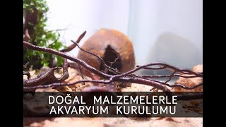 Doğal Malzemelerle Bitkili Cichlid (Ciklet) Akvaryumu Kurulumu 4 Akvaryumluk Set Tasarımı 2. Bölüm