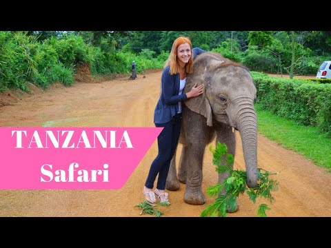 The Best Safari in Tanzania