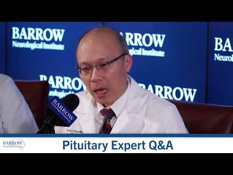 Poliklinika Harni - Stres i nadbubrežna žlijezda