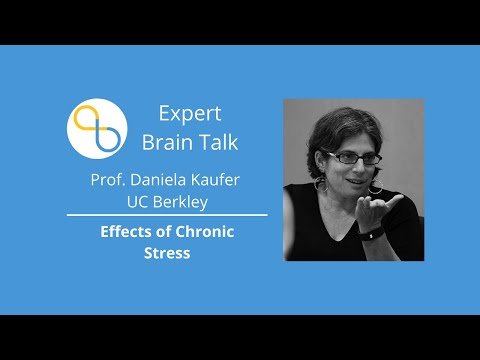 The Effects of Chronic Stress on the Brain