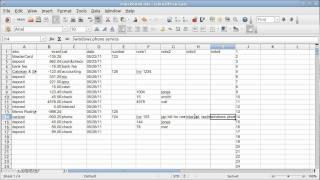 Spreadsheet Basics (CHECKBOOK, QUICKEN)