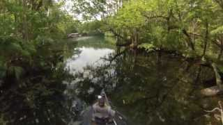 Canoeing the Chassahowitzka River Wildlife Refuge in Florida