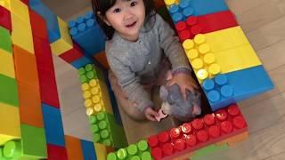 巨大ブロックで猫ちゃんのお家作り おせわごっこ!Haru make Color Brick Block House