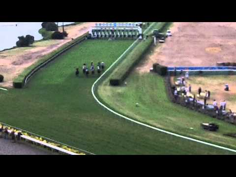 Day at the Races | Project Concern International