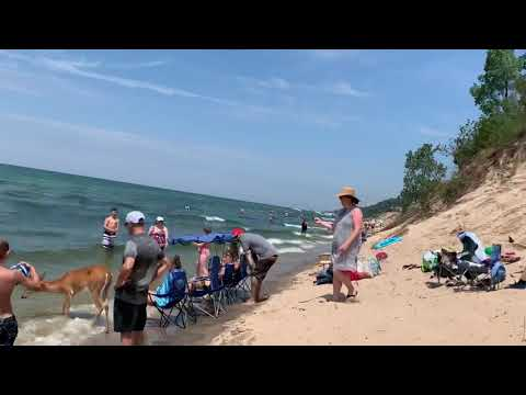 Jim Show - This Deer Is Just Spending A Day At The Beach!