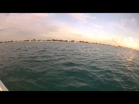Boca Grande Beach Tarpon Charter Fishing - Florida