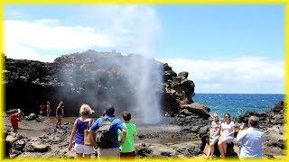 Maui County Hawaii Adventure