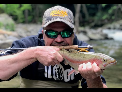 Flies On The Nantahala | S-3/Ep2