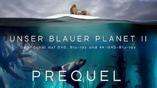Unser blauer Planet II - Teaser 1 [HD] Deutsch / German