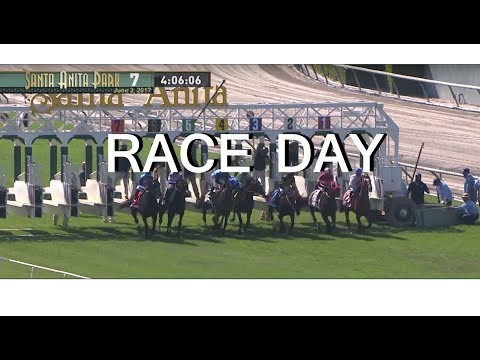 DAY IN THE LIFE: RACEHORSE (RACE DAY)