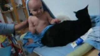 Cats On The Changing Table