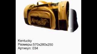 Сумки дорожные и спорт промо заказ  www.vrt21.ru(Сумки спортивные и дорожные промо разных цветов и размеров купить готовые и заказать с логотипом производс..., 2014-02-11T05:47:20.000Z)