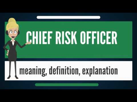 What is CHIEF RISK OFFICER? What does CHIEF RISK OFFICER mean? CHIEF RISK OFFICER meaning