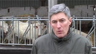 Vivre l'élevage en Picardie : Un salarié polyvalent cultures et élevage